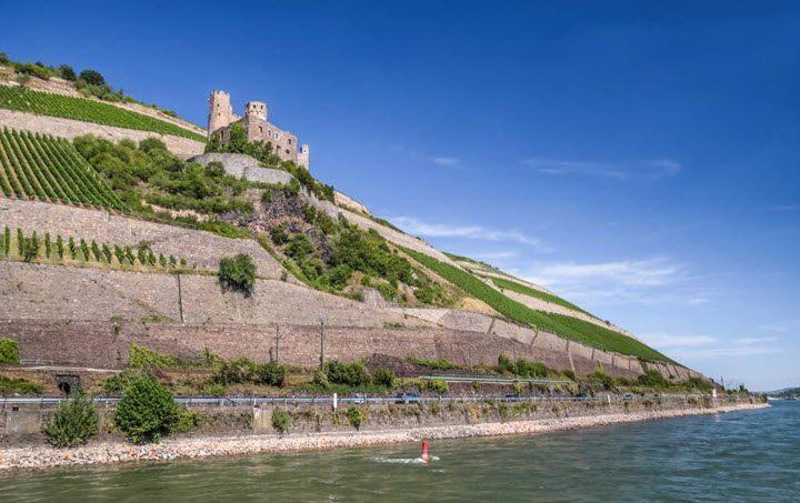 Vindistriktet Rheingau i Tyskland