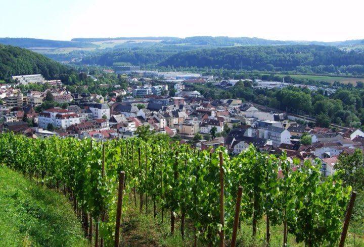 Vindistriktet Mosel-Saar-Rüwer i Tyskland