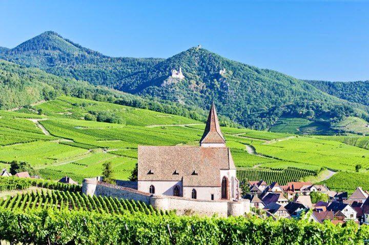 Vindistriktet Alsace i Frankrike