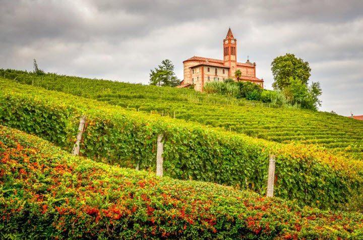 Vindistriktet Piemonte i Italia