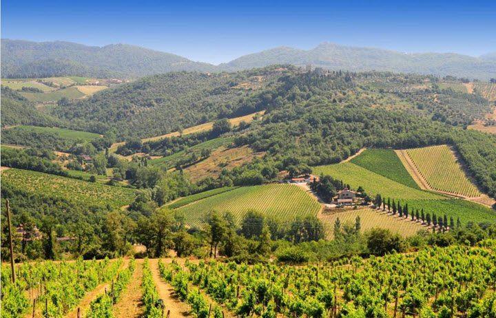 Vindistriktet Toscana i Italia
