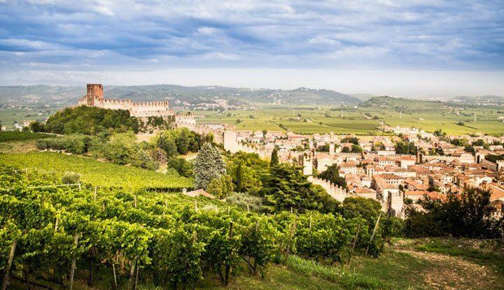 Vindistriktet Veneto i Italia