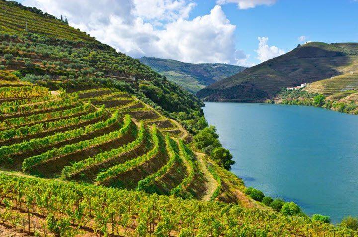 Vindistriktet Douro i Portugal