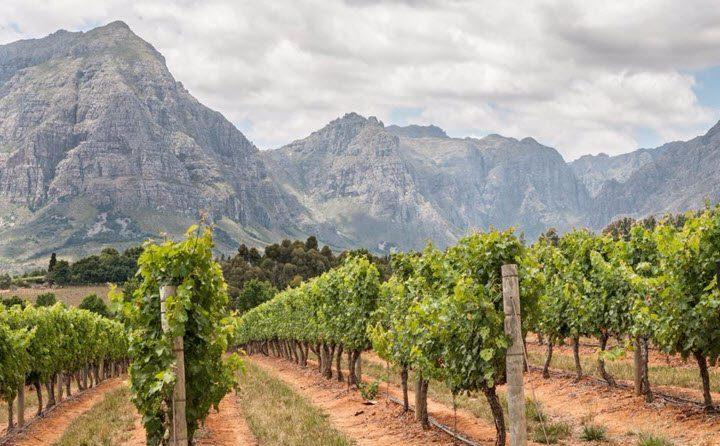 Vindistriktet Coastal Region i Sør-Afrika