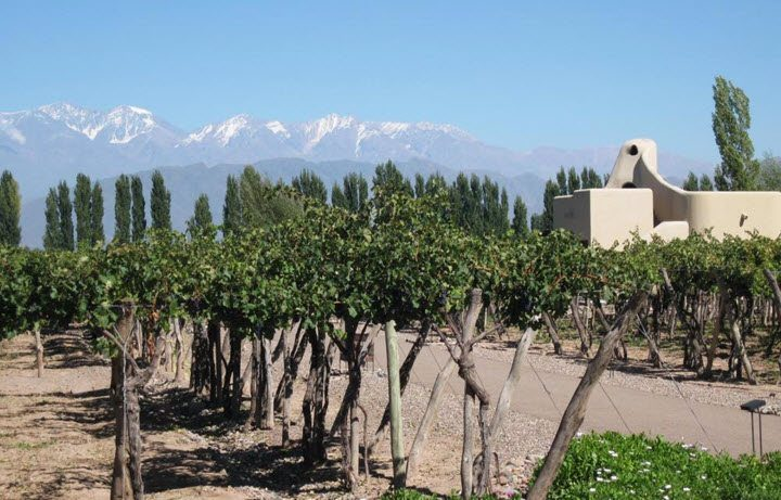 Vindistriktet Mendoza i Argentina