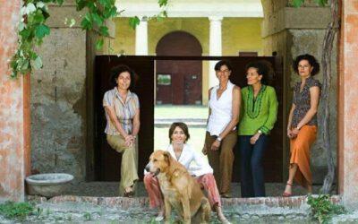 Vinmarkene i Villa Angarano – en eldgammel historie